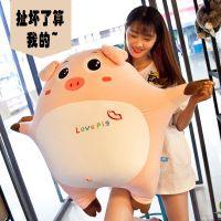 爆款网红新款毛绒玩具表情小猪抱枕公仔儿童创意节日礼物外贸定制