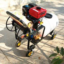 农用四轮自走式园林喷雾器 手推式果园喷雾机