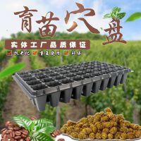 育苗穴盘蔬菜多肉花卉育苗专用育苗盘加厚抗氧化播种盘多次使用