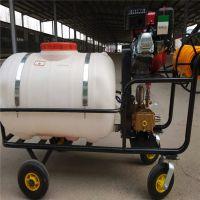 大容量高杆喷雾器 拉管式汽油打药机 自走式果园杀虫喷雾器厂家直销
