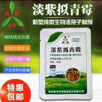 黄瓜根结线虫的克星生物特效药复配地力旺效果更好淡紫拟清霉12g粉剂直销