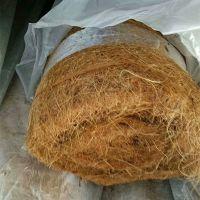 山东直销环保草毯 秸秆椰丝毯 pp加筋抗冲刷抗腐蚀植物纤维毯