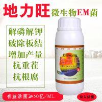 供应地力旺em菌剂土壤调节剂解磷解钾固氮瓶装