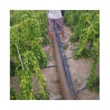 大田山药滴灌栽培技术安装技术指导