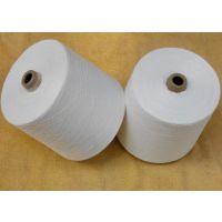 仿大化涤纶纱--河北得利达纺织43支
