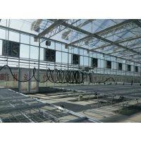 湖北汉川6万平方连动式温室大棚建设生产厂家 PC阳光板大棚