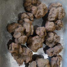 朱砂莲功效与作用 牛血莲哪里购买多少钱一公斤
