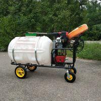 四轮手推式喷雾器 自走式农田打药机厂家 大公率洗车机
