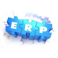 你可能不太清楚这些ERP实施成本!