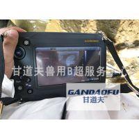 奶牛B超测孕仪GDF-W6价格,测奶牛怀孕B超多少钱