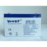 免维护铅酸蓄电池6V12AH