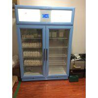 防疫专用小冰箱