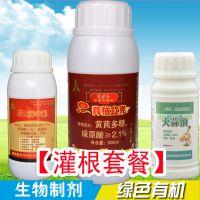防治芒果角斑病效果好的药,靓果安,水剂