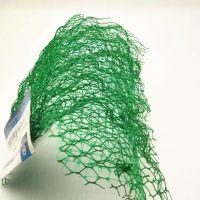 供应PE三维植被网 绿化三维网护坡施工方案 量大从优