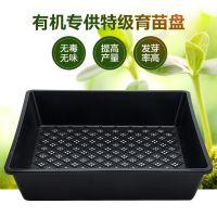 多肉花盆塑料育苗盘收纳整理框育苗盆小黑方彩方多肉育苗盒