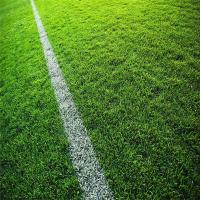 足球场假草坪基层做法 足球场假草坪多少钱 人造草地毯