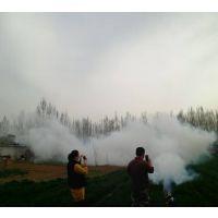高效环保弥雾机 优质打药机 标准烟雾机图片