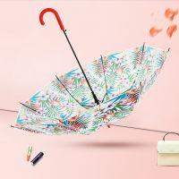 RST Real Star星宝伞业外贸出口欧美时尚潮流火烈鸟女士透明雨伞