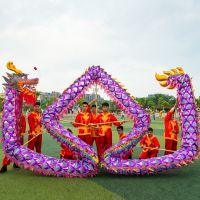 供应专业舞龙舞狮道具 国标比赛龙 高档紫色网格龙 烫金网龙广东