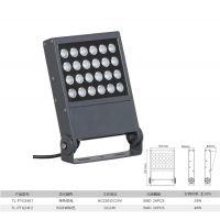拓龙照明工程定制新款防水24W大功率led投光灯户外亮化投射灯源头厂家