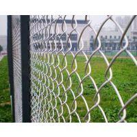 安徽定远园林围栏 护栏网 养殖围网 球场围栏 小区隔离网 草坪PVC护栏