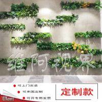 植物墙制作方案东莞维阿视界可来图定制上门安装