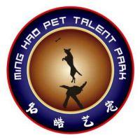 天津市东方名仕犬类训练服务有限公司