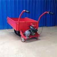 养殖场拉饲料履带斗车 湿滑小路能用的动力车 奔力LvD-D