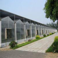 玻璃智能温室大棚 蔬菜花卉阳光温室大棚供应厂家