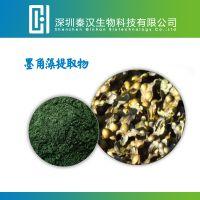 墨角藻提取物 规格20:1 标准比例提取 岩藻黄质 量大从优 包邮