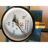 天津压力表 工程打压专用量大包邮 铜头铁芯质量保证 Y100-1.6MPA