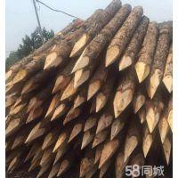 供应河北沧州河道护坡杉木桩_竹竿_防腐木