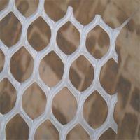 塑料养殖网 养鸡用底网 耐酸碱养鸡网
