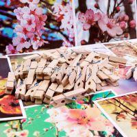 3CM精美原木色木质小夹子创意 DIY手工配件 名片留言便签照片夹