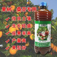 柑橘种植户新宠em菌液 品质好产量高