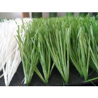 桂林足球场草坪工程——康奇体育包工包料一站式服务