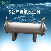 污水处理用 臭氧发生器设备 厂家型号