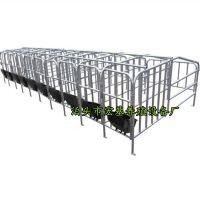 出售新型母猪定位栏保胎限位栏宏基畜牧厂家直销