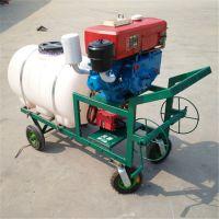 手推远程高压喷药机 超长拉管喷雾器 柴油手推式打药机厂家