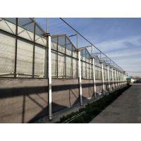 玻璃温室 玻璃温室的厂家 设计安装