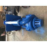 厂家直销ZJL高扬程耐磨渣浆泵选煤厂专用泵无阻塞液下排污渣浆泵强能