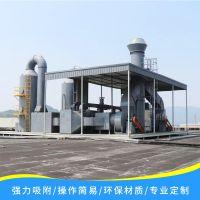 仁信源活性炭催化燃烧CO系统 活性炭催化燃烧设备 工业有机废气处理装置