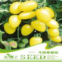 特色蔬菜种子系列(家庭装) 牛奶黄番茄  (20粒)30种西红柿