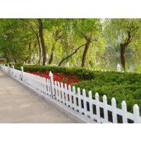 登封 新力金属pvc丝草坪护栏 园林绿化花坛围栏