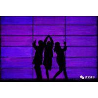 D2500(2.5mm)光纤发光砖纤维发光混凝土光纤水泥砖透光砖光纤传光砖塑料光纤砖