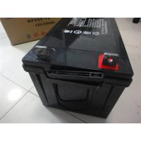 冠军蓄电池NP200-12(12V200AH)太阳能蓄电池免维护