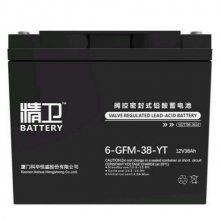 科华精卫蓄电池6-GFM-38-YT 12V38AH铅酸免维护蓄电池