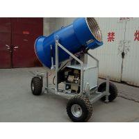 河北迪特全自动造雪机
