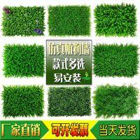 广州塑料假草坪仿真植物公司内外墙房屋吊顶门头招牌绿植背景墙人造草皮