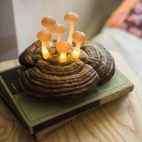 可定做蘑菇森林丛摆件挂饰台灯小夜灯墙面壁挂爱丽丝仙境礼物